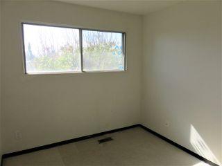 Photo 18: 13335 119 Street in Edmonton: Zone 01 House Half Duplex for sale : MLS®# E4189363