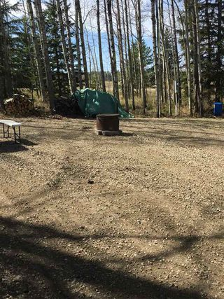 Photo 6: 7 Hauser's Cove: Rural Wetaskiwin County Rural Land/Vacant Lot for sale : MLS®# E4192451