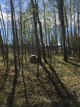 Photo 10: 7 Hauser's Cove: Rural Wetaskiwin County Rural Land/Vacant Lot for sale : MLS®# E4192451