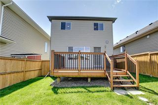 Photo 35: 2465 SAGEWOOD Crescent SW: Airdrie Detached for sale : MLS®# C4306167