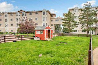Photo 21: 252 13441 127 Street in Edmonton: Zone 01 Condo for sale : MLS®# E4206893