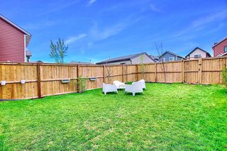 Photo 35: 95 MASTERS Crescent SE in Calgary: Mahogany Detached for sale : MLS®# A1027928