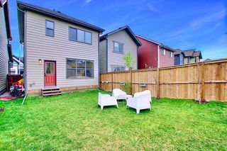 Photo 32: 95 MASTERS Crescent SE in Calgary: Mahogany Detached for sale : MLS®# A1027928