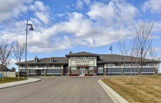 Photo 42: 95 MASTERS Crescent SE in Calgary: Mahogany Detached for sale : MLS®# A1027928