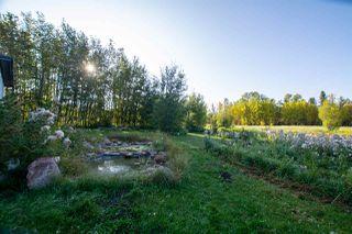 Photo 36: 147 ERICKSON Drive: Rural Sturgeon County House for sale : MLS®# E4188685