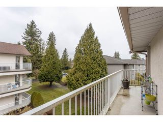 "Photo 18: 306 33401 MAYFAIR Avenue in Abbotsford: Central Abbotsford Condo for sale in ""Mayfair Gardens"" : MLS®# R2447821"