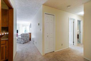 "Photo 4: 201 1521 BLACKWOOD Street: White Rock Condo for sale in ""SANDRINGHAM"" (South Surrey White Rock)  : MLS®# R2455495"