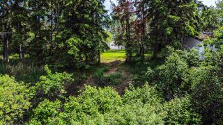 Photo 50: : Rural Sturgeon County House for sale : MLS®# E4200885