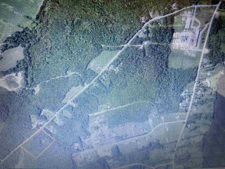 Photo 4: 38 Stewart Road in Lyons Brook: 108-Rural Pictou County Vacant Land for sale (Northern Region)  : MLS®# 202011938