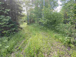 Photo 2: 38 Stewart Road in Lyons Brook: 108-Rural Pictou County Vacant Land for sale (Northern Region)  : MLS®# 202011938