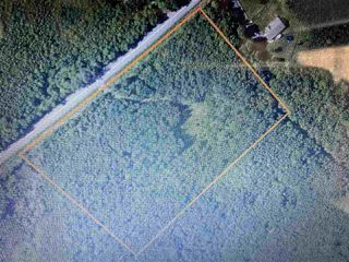 Photo 1: 38 Stewart Road in Lyons Brook: 108-Rural Pictou County Vacant Land for sale (Northern Region)  : MLS®# 202011938