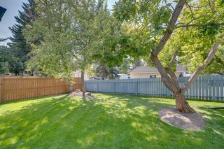 Photo 33: 4908 BROCKINGTON Road NW in Calgary: Brentwood Detached for sale : MLS®# A1032247