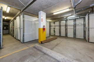 Photo 23: 301 5280 TERWILLEGAR Boulevard in Edmonton: Zone 14 Condo for sale : MLS®# E4223317