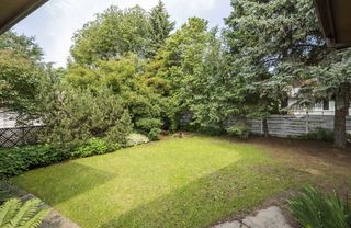 Photo 6: 5319 108 Street in Edmonton: Zone 15 House for sale : MLS®# E4176396