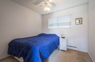Photo 26: 5319 108 Street in Edmonton: Zone 15 House for sale : MLS®# E4176396