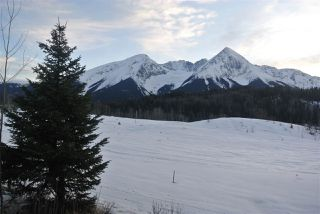 Photo 3: LOT 3 W 16 Highway in Smithers: Smithers - Rural Land for sale (Smithers And Area (Zone 54))  : MLS®# R2446796