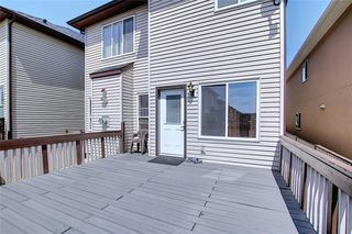 Photo 14: 312 SADDLEMONT Boulevard NE in Calgary: Saddle Ridge Detached for sale : MLS®# C4299986