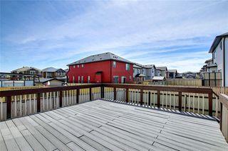 Photo 13: 312 SADDLEMONT Boulevard NE in Calgary: Saddle Ridge Detached for sale : MLS®# C4299986
