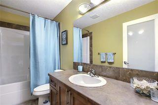 Photo 35: 312 SADDLEMONT Boulevard NE in Calgary: Saddle Ridge Detached for sale : MLS®# C4299986