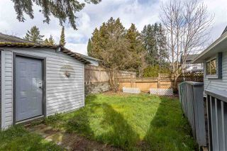 Photo 32: 12025 206B Street in Maple Ridge: Northwest Maple Ridge House for sale : MLS®# R2464942