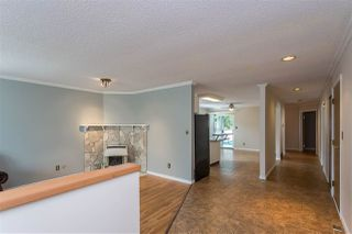 Photo 18: 12025 206B Street in Maple Ridge: Northwest Maple Ridge House for sale : MLS®# R2464942