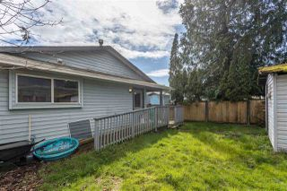 Photo 34: 12025 206B Street in Maple Ridge: Northwest Maple Ridge House for sale : MLS®# R2464942