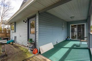 Photo 31: 12025 206B Street in Maple Ridge: Northwest Maple Ridge House for sale : MLS®# R2464942