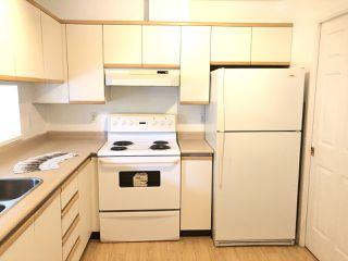 """Photo 13: 309 7455 MOFFATT Road in Richmond: Brighouse South Condo for sale in """"COLONY BAY"""" : MLS®# R2468181"""