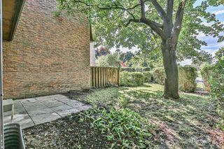Photo 28: 46 L'amoreaux Drive in Toronto: L'Amoreaux House (2-Storey) for sale (Toronto E05)  : MLS®# E4861230