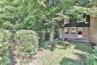 Photo 30: 46 L'amoreaux Drive in Toronto: L'Amoreaux House (2-Storey) for sale (Toronto E05)  : MLS®# E4861230