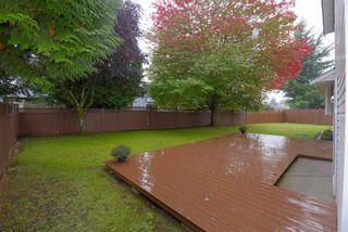 "Photo 27: 15522 95 Avenue in Surrey: Fleetwood Tynehead House for sale in ""BERKSHIRE PARK"" : MLS®# R2511921"