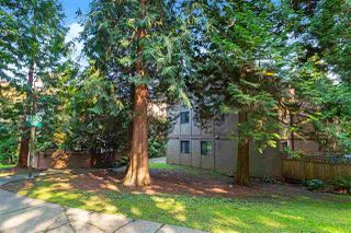 Photo 19: 202 9150 SATURNA DRIVE in Burnaby: Simon Fraser Hills Condo for sale (Burnaby North)  : MLS®# R2511075