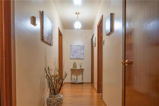 Photo 12: 44 Merriwood Avenue in Winnipeg: Garden City Residential for sale (4G)  : MLS®# 1921480