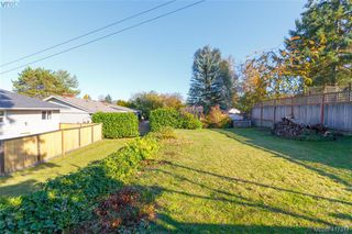 Photo 23: 591 Baker St in VICTORIA: SW Glanford Single Family Detached for sale (Saanich West)  : MLS®# 827906