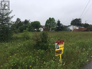 Photo 8: 93 West Street AND 17 Boland Avenue in Stephenville: Vacant Land for sale : MLS®# 1179881