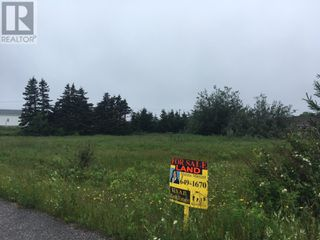 Photo 9: 93 West Street AND 17 Boland Avenue in Stephenville: Vacant Land for sale : MLS®# 1179881