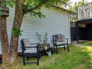 Photo 21: 982 Lovat Ave in Saanich: SE Quadra Single Family Detached for sale (Saanich East)  : MLS®# 843162