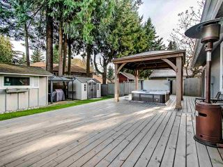 Photo 19: 1904 ALDERLYNN Drive in North Vancouver: Westlynn House for sale : MLS®# R2446855