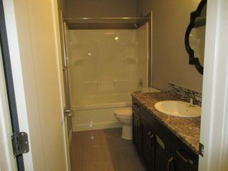 Photo 7: 7515 - 178 Avenue in Edmonton: Basement Suite for rent