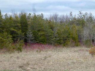 Photo 27: Pt Lt 7 Hwy 124 in Melancthon: Rural Melancthon Property for sale : MLS®# X4759358