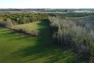 Photo 26: Pt Lt 7 Hwy 124 in Melancthon: Rural Melancthon Property for sale : MLS®# X4759358