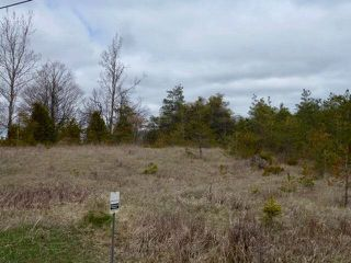 Photo 4: Pt Lt 7 Hwy 124 in Melancthon: Rural Melancthon Property for sale : MLS®# X4759358