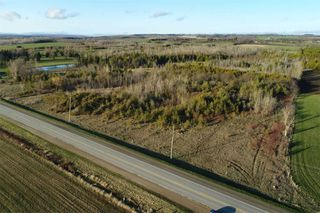 Photo 14: Pt Lt 7 Hwy 124 in Melancthon: Rural Melancthon Property for sale : MLS®# X4759358