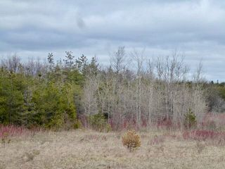 Photo 13: Pt Lt 7 Hwy 124 in Melancthon: Rural Melancthon Property for sale : MLS®# X4759358