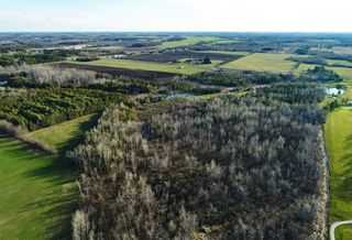 Photo 5: Pt Lt 7 Hwy 124 in Melancthon: Rural Melancthon Property for sale : MLS®# X4759358