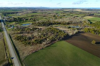 Photo 18: Pt Lt 7 Hwy 124 in Melancthon: Rural Melancthon Property for sale : MLS®# X4759358