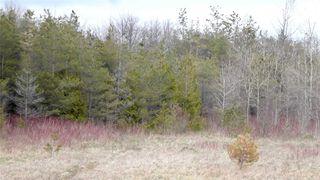 Photo 21: Pt Lt 7 Hwy 124 in Melancthon: Rural Melancthon Property for sale : MLS®# X4759358