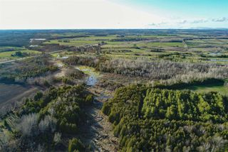 Photo 12: Pt Lt 7 Hwy 124 in Melancthon: Rural Melancthon Property for sale : MLS®# X4759358