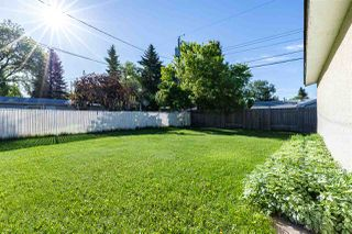 Photo 23: 880 Birch Avenue: Sherwood Park House for sale : MLS®# E4199660