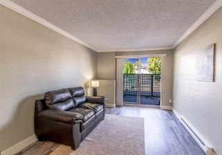 "Photo 3: 102 1948 COQUITLAM Avenue in Port Coquitlam: Glenwood PQ Condo for sale in ""COQUITLAM PLACE"" : MLS®# R2480981"